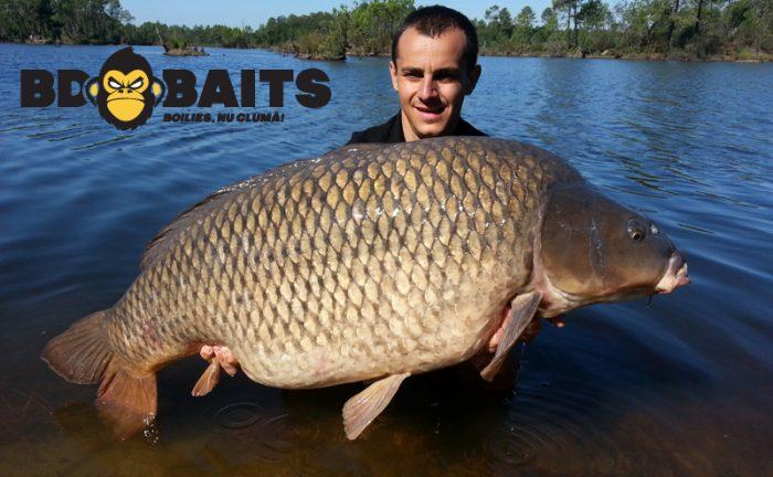 Bd baits si culi baits lanseaza noi game de produse la f h for Hunting and fishing expo