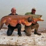 Paul Booth de la Ebro Crazy Cats si pescuitul la somn pe Ebru