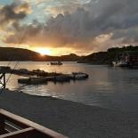 Vise Pescaresti Maliuc participa la Fishing & Hunting Expo 2020