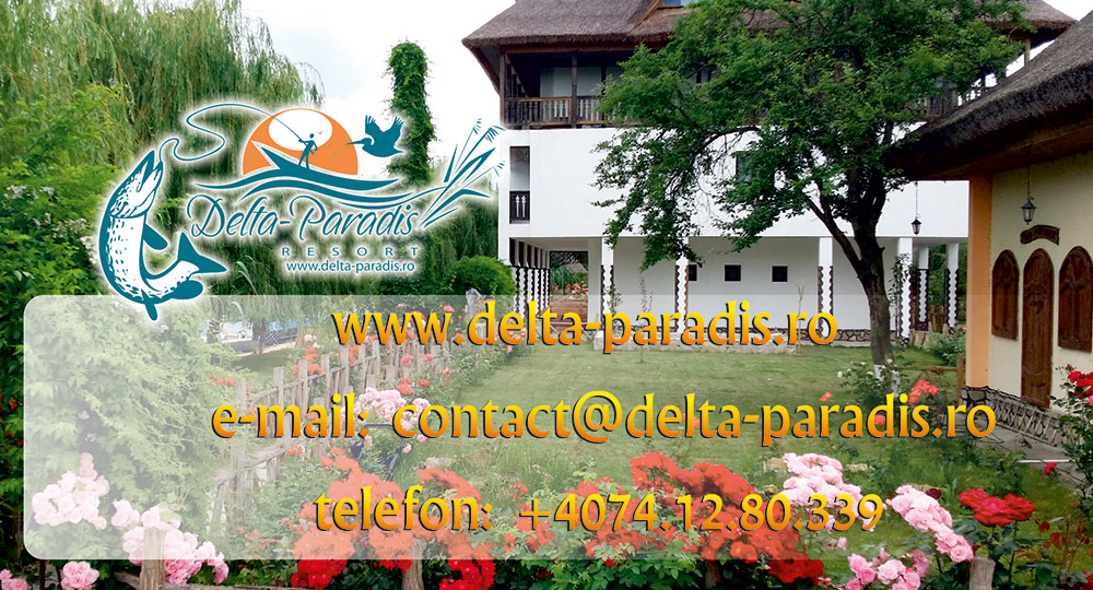 Delta Paradis